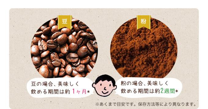豆の場合、美味しく飲める期間は約1ヶ月 粉の場合、美味しく飲める期間は約2週間