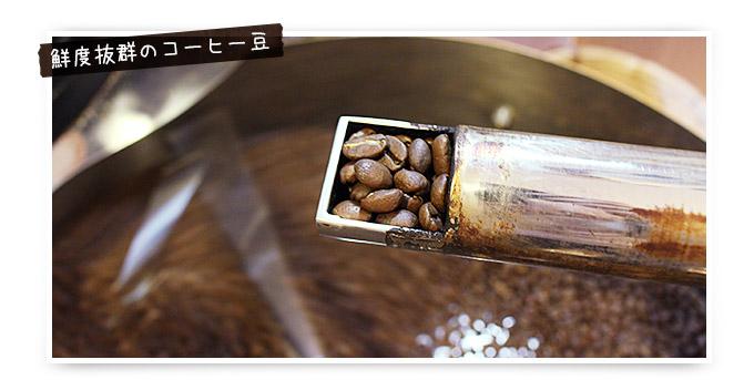 鮮度抜群のコーヒー豆