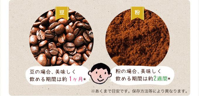 豆の場合1ヶ月、粉の場合2週間イメージ