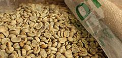 コーヒー豆知識イメージ